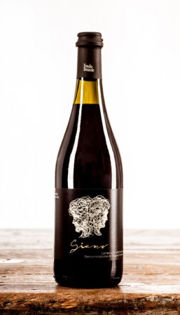 Lambrusco Mantovano Biologico